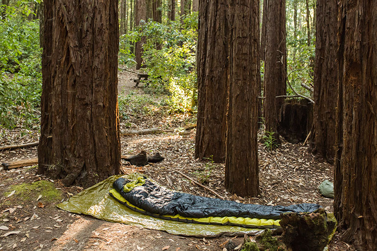 Slapen in het bos