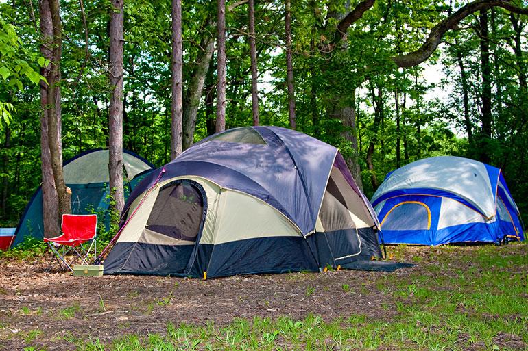 Tenten in het bos